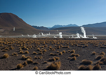 Geothermal field - Earth revealing thermal energi in steam...