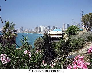 Tel Aviv seascape, Israel - Tel Aviv seascape view, Israel...