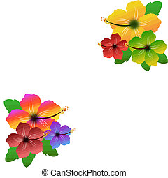 Hibiscus floral frame on white background with space for...