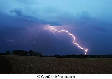 Lightning strikes down over a field