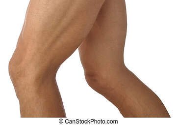 Legs - Closeup of male athletes lean muscular legs on white...