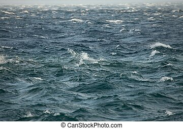 Waves of the sea in strong wind