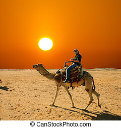 with the camel in the desert - in the summer holiday on a...