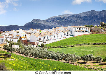 Real Estate Development in Ronda - Residential real estate...