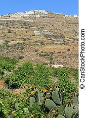Santorini island landscape, Greece
