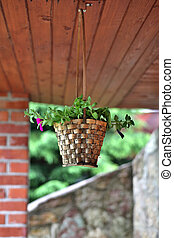 Basketwork hanging above ground outside building - Flower in...