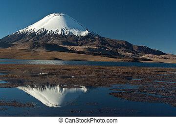 Andean volcano Parinacota - National Park Lauca , lake...