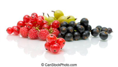 red currants on the background of a heap of ripe berries -...