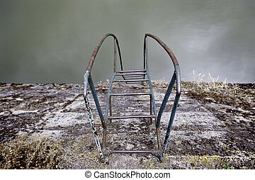 A natural pool ladder - A natural swimming pool ladder, a...