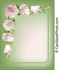 Floral frame with mallow flowers Vector background