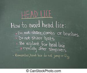 informação, cabeça,  chalkboard, piolhos