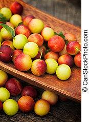 Fresh wild plum - Fruit garden concept. Freshly harvested...