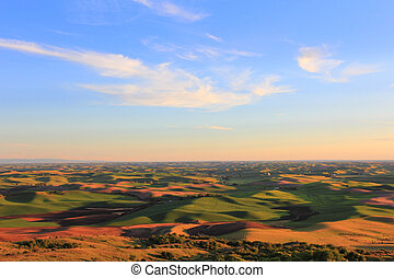 Beautiful Hills of Palouse - The beautiful hills of Palouse,...