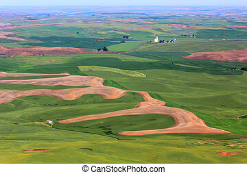 Hills of Palouse - Beautiful patchwork of farm hills in...