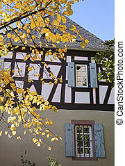 Autumn leaves in front of an old half-timbered house