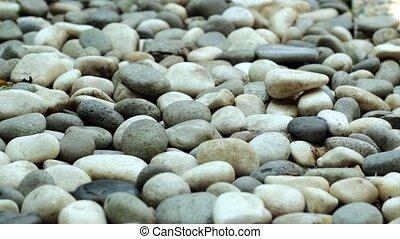 Garden Pebble Slider Shot 2 - footage of garden pebble in...