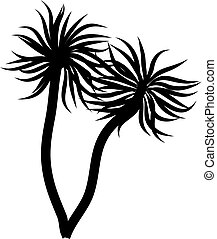palm trees - black and white isolated palm tree icon