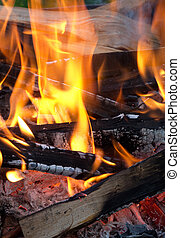 live red coals and burning wood - live coals beautiful...
