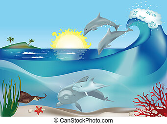 Jumping dolphins - Jumping and swimming dolphins underwater