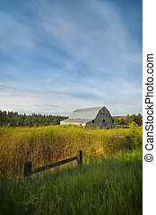 White barn on the Palouse, Washington