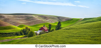 Red Barn in the Palouse - Red barn in the rolling hills of...