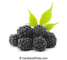 Blackberry isolated on white
