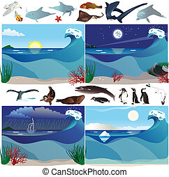 Sea scenarios and animals - Sea scenarios with various...