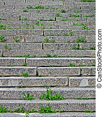 focus on center stone staircase with green grass between...