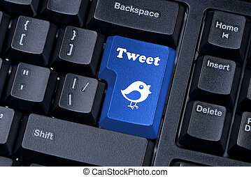 Button keypad with tweet and bird closeup.