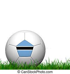 3D Soccer balll  Botswana Flag Patter on green grass over white background