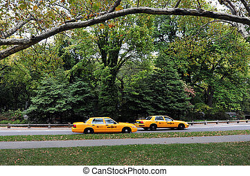 Travel Photos of New York - Manhattan - Two yellow taxi cabs...