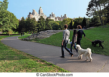 Travel Photos of New York - Manhattan - New Yorkers walks...