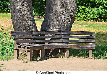 Park bench under tree, Sofiyevka, Uman, Ukraine