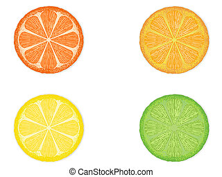 citrus fruit slices - isolated four citrus fruit slices on...