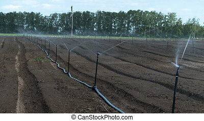 Irrigation system on farm