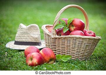 Fresh ripe apples in basket