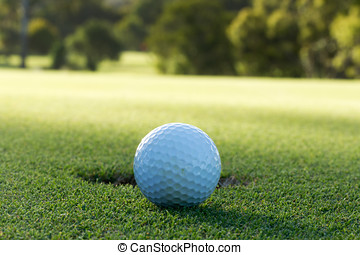 A golf ball and hole - A golf ball sitting behind a hole