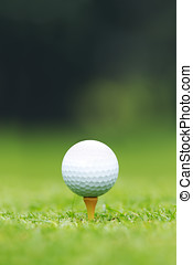 Golf ball on tee - A close-up of a Golf ball sitting on a...