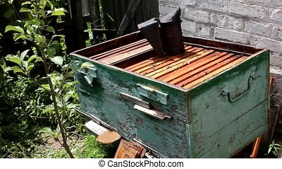 Beehive - dwelling bees. Frames are covered with planks. To...