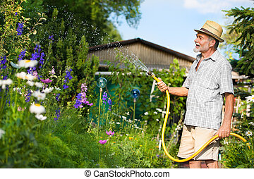 Watering the garden - Senior man watering the garden with...