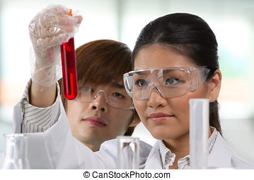 Two scientists analyzing solution - Scientific researchers...