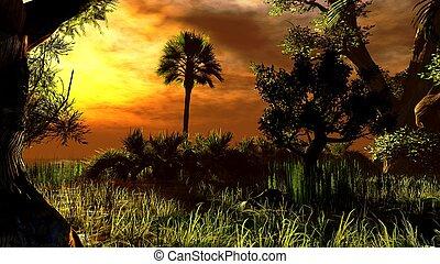Wetland - swamp