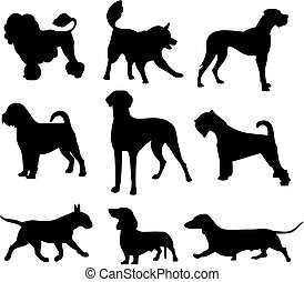 dog set - vector illustration of a dog set