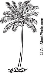 coco palm - 	Coco palm,illustration with only one colour