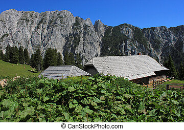 Alpine hut, Slovenia, Europe - Alpine hut Korosica in...
