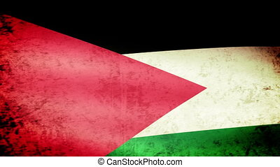 Palestine Flag Waving, grunge look