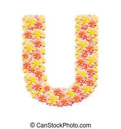 U,flower alphabet isolated on white