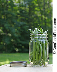 A jar full of fresh picked green beans snap, bush beans on a...