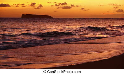 Waves On Tropical Sandy Beach at Sunset