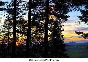 Sunset on Kamiak Butte with Steptoe Butte seen through the...